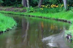 River. Stock Photos
