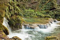 River with small waterfalls stock image