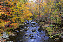 River in the Smoky Mountains. View of autumn colors along Little River, located in Great Smoky Mountains National Park, Tennessee Stock Photo