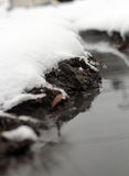 River with snow covered banks Stock Image