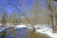 River with Snow and ice cover in the forest Royalty Free Stock Photos