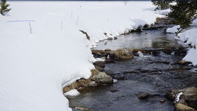 River in with snow. River in the middle of a mountain with snow Royalty Free Stock Images