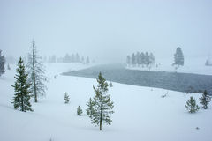 River in a snowstorm in yellowstone Royalty Free Stock Photography