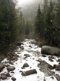 River on a Snowy Day Stock Photography