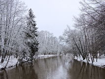 River and snowy trees, Lithuania Royalty Free Stock Photo