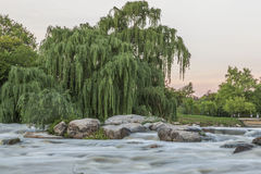 River in South Africa Royalty Free Stock Photo