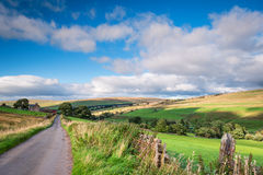River South Tyne Valley Royalty Free Stock Images