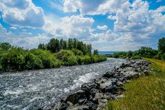 River in Southern Montana. The Madison River in Southern Montana as you enter Yellowstone National Park Royalty Free Stock Images
