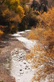 River sparkleing in the sun Royalty Free Stock Image