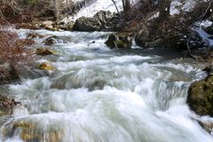 River during Spring Stock Photo