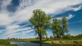 River in spring on a bright sunny day. Blue sky with white clouds stock video footage