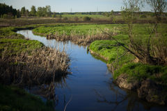 River and spring field.  Stock Photography