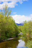 River in Spring  Royalty Free Stock Image