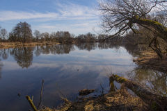 River in Spring Stock Photography