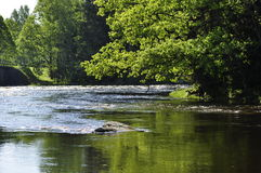 River in spring Royalty Free Stock Images
