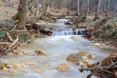 River in spring season Stock Photo