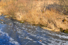 River at spring. Stock Photography