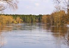 River in springtime stock image