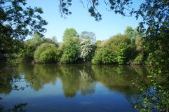 River in springtime Stock Photography