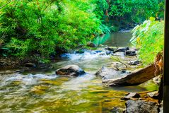 The River in the Sri Sat Cha Na Lai national park landscape, Sukhothai, Thailand Stock Photo