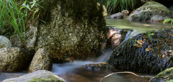 A river stage. Smooth water in the river stock photo