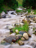 River with stone. And herb on foregrounds. Natural composition Royalty Free Stock Photo