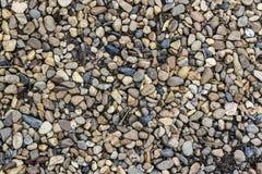 River Stone Background Stock Image