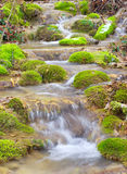 River and stone with moss Stock Images