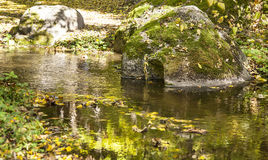 River and stones in autumn forest Stock Photography