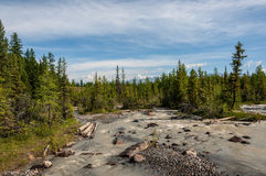 River stones forest mountain Stock Image