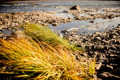 Quiet river water in the evening light background. River stones, Pebble river banks.great for gaming background, shot in warm evening light royalty free stock images