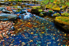 The river and stones Stock Photography