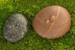 The River Stones spa treatment scene with raindrop on moss backg. Round zen Royalty Free Stock Photography