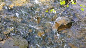 River stones on transparent water background. A river flows over rocks in summer day stock footage