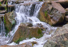 River stones waterfall. Beautiful waterfall streams on the mountain river flowing among stones, rocks and forest in the Altai mountains, Russia Stock Images