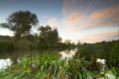 River Stour sunrise Royalty Free Stock Photos