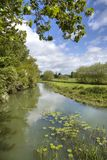 The River Stour, Warwickshire Stock Image