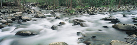 River stream Royalty Free Stock Images