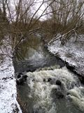 River stream brook flowing through snowy forested area. In english countryside Stock Photography