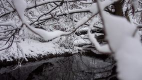River stream with fallen trees in the forest in winter. A river in a snow covered forest. River stream with fallen trees in the forest in winter stock video