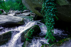 River stream flowing over rock formations in the mountains Stock Images