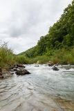 River stream Stock Photography