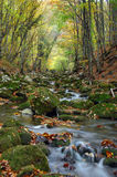 River stream in high mountain in autumn. Of Crimea Stock Photo