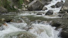 River stream royalty free stock photography