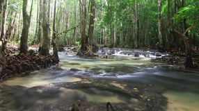 River stream at Krabi Thailand Stock Photography