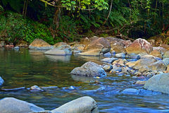 River stream. Mameyes river stream that flows down from the El Yunque national forest in Puerto Rico Stock Image