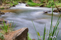 River or stream nature landscape Royalty Free Stock Photography