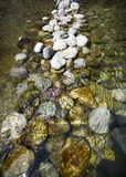 A river stream with pebbles Stock Images