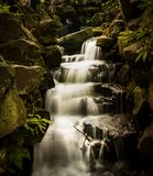 River stream. Water stream in the forest in the UK Summer time Royalty Free Stock Photos