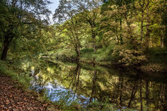 River strid near Bolton Abbey in yorkshire, England Royalty Free Stock Photo